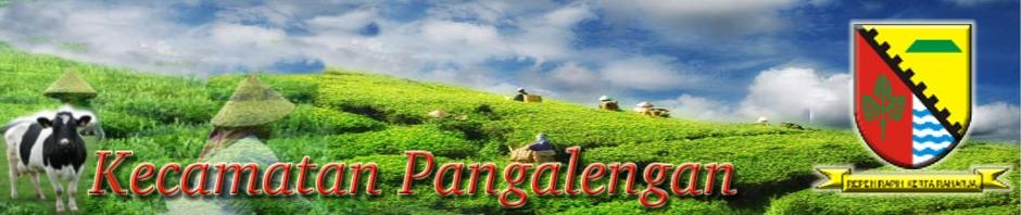 Website Kecamatan Pangalengan